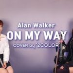 On My Way – Alan Walker – violin & flute cover by 2color
